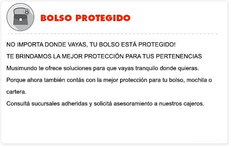 Bolso Protegido